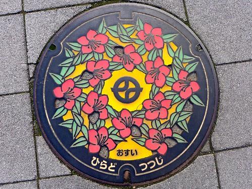Kyotanabe Kyoto, manhole cover 7 (京都府京田辺市のマンホール7) | by MRSY