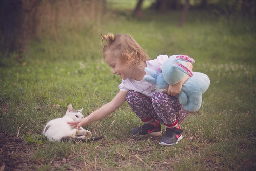 Rabbit And Cat | by Millan_1977