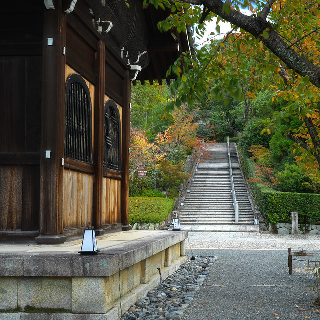 To the steps