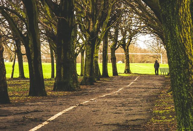 Fairview Park in Dublin