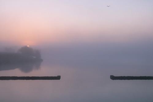hurworthburnreservoir countydurham sunrise misty still england northeast canon760d sigmaaf1770mmf2845dcmacro minimalism