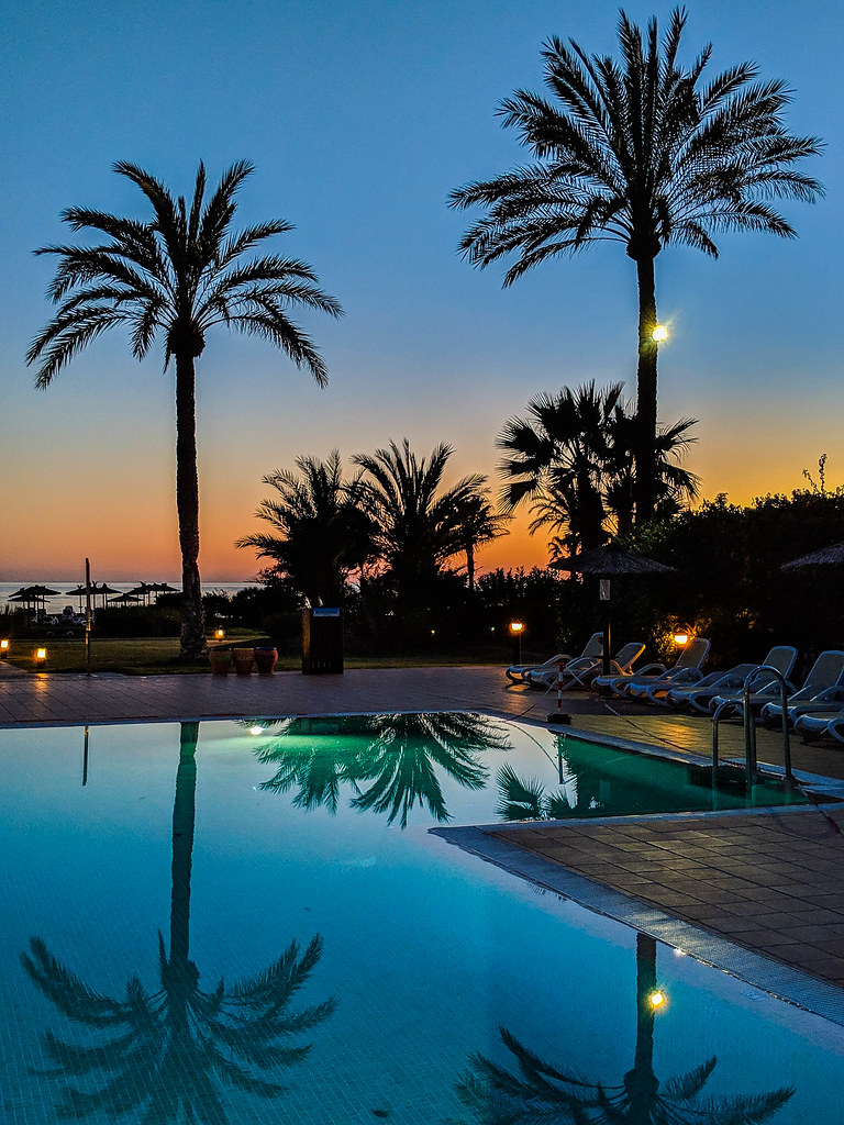 A sunset view of the pool from Playa Granada Club Resort, with two palm trees in the background