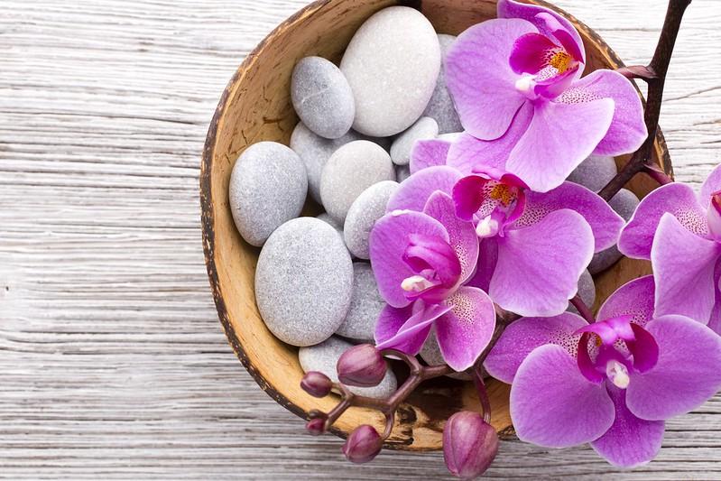 Обои камни, орхидея, pink, flowers, orchid картинки на рабочий стол, раздел цветы - скачать