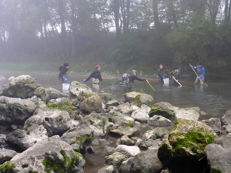 Raziskava vplivov CČN Domžale- Kamnik na reko Kamniško Bistrico