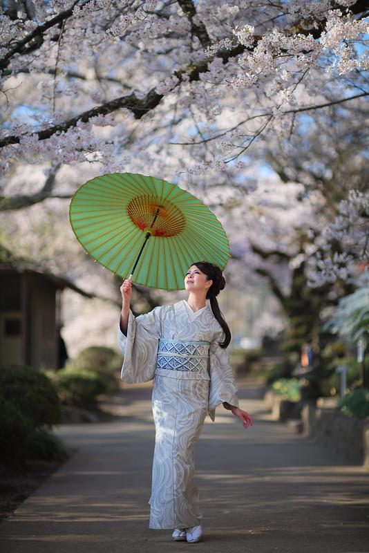 Japanese spring ( Cocoro )