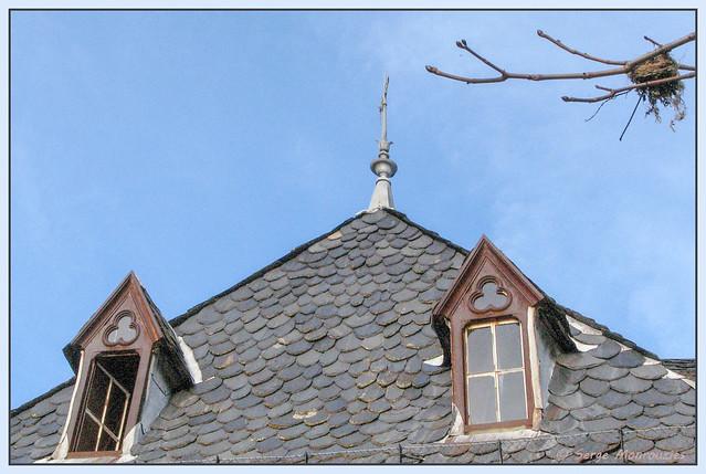 Un nid à la fenêtre