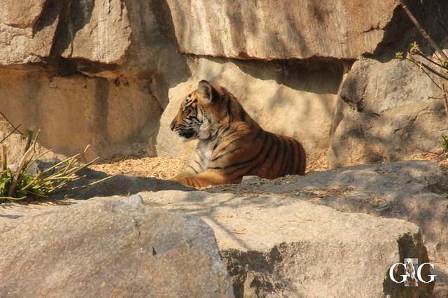 Besuch Tierpark Friedrichsfelde 06.04.2019122