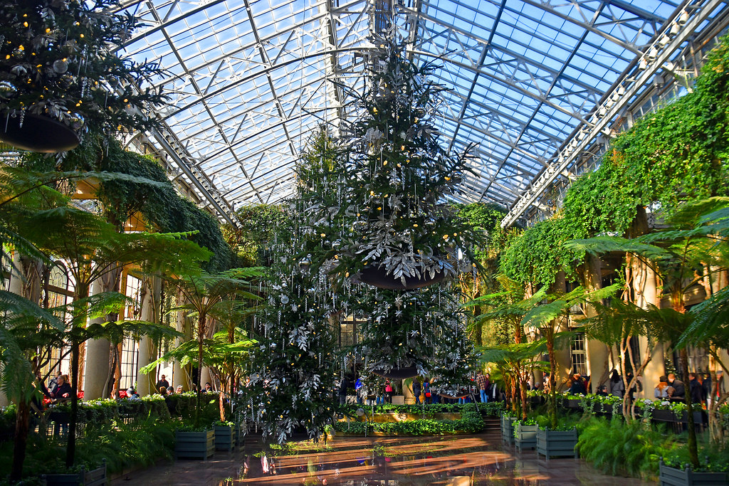 Longwood Gardens Christmas.Floating Christmas Trees The Longwood Gardens Conserv