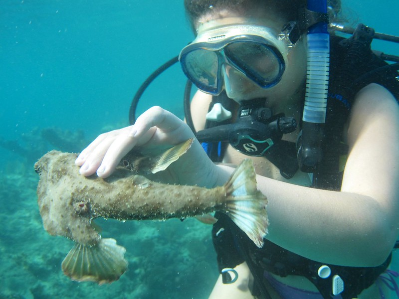 G-July 11th 2012 La Boca Diving Pedro 2615