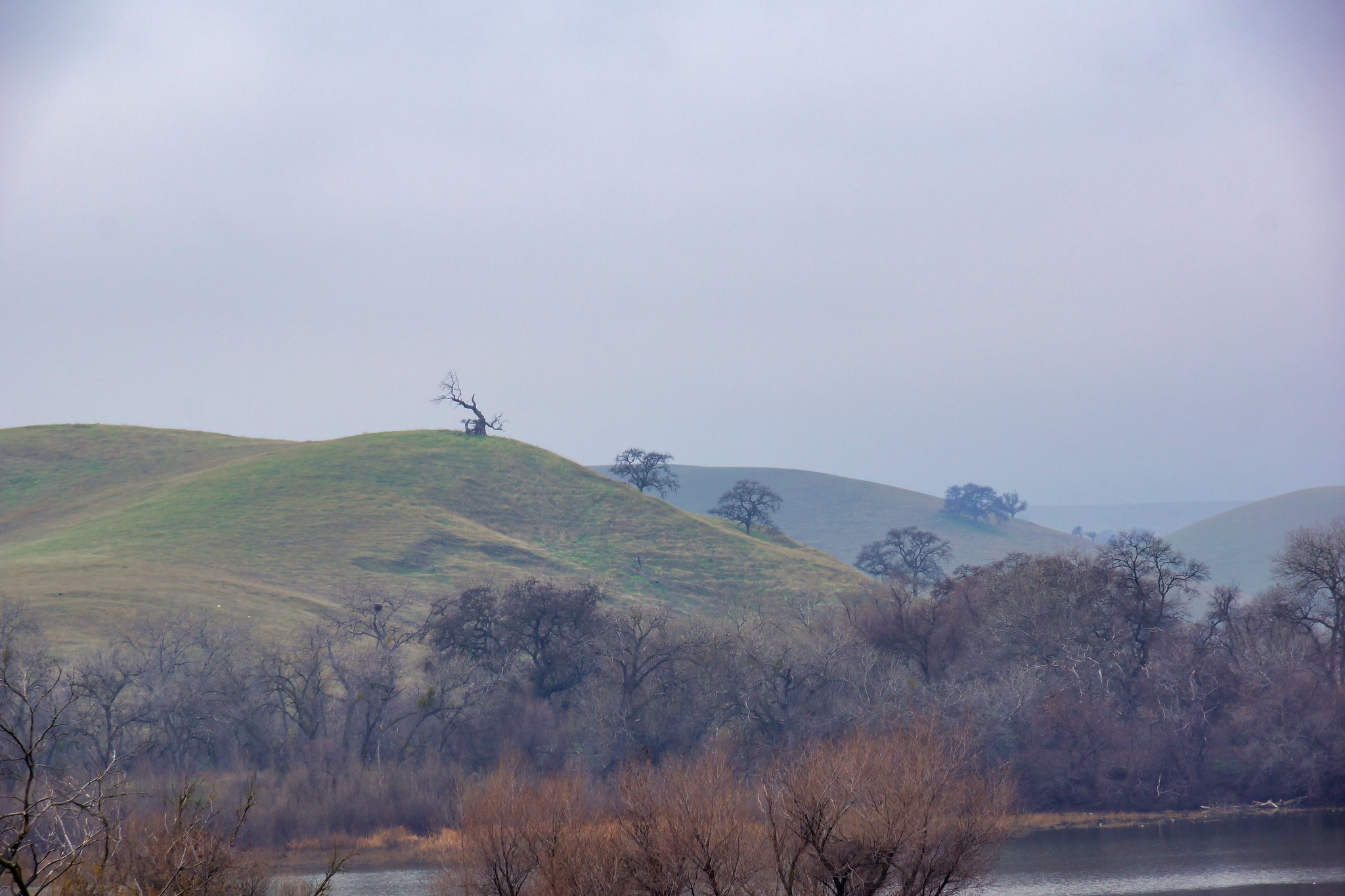 2019-01-13 - Landscape Photography, Marsh Creek Reservoir