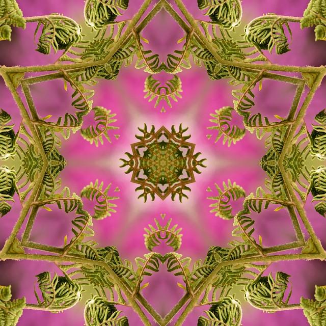 Kaleido Abstract 2007