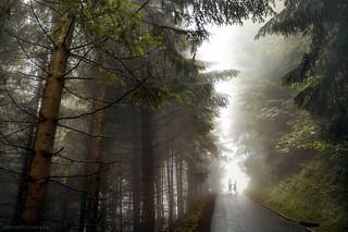Bavarian wedding in fog