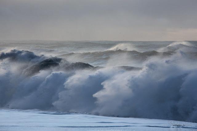 The Sea Trolls