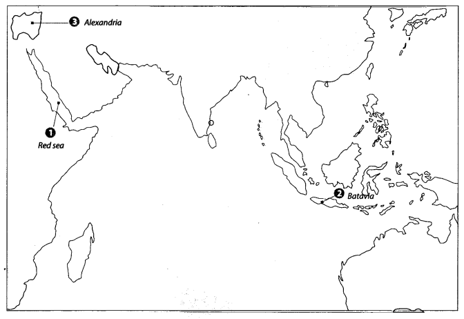 Class 10 History Map Work Chapter 4 The Making of Global World A4