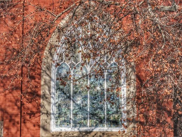 Window Behind