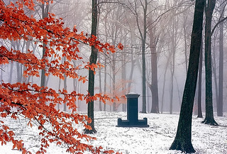 "Cincinnati - Spring Grove Cemetery & Arboretum ""Solitary Marker On A Foggy/Winter Morning"" 