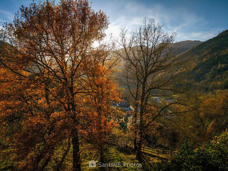 La cálida luz del otoño