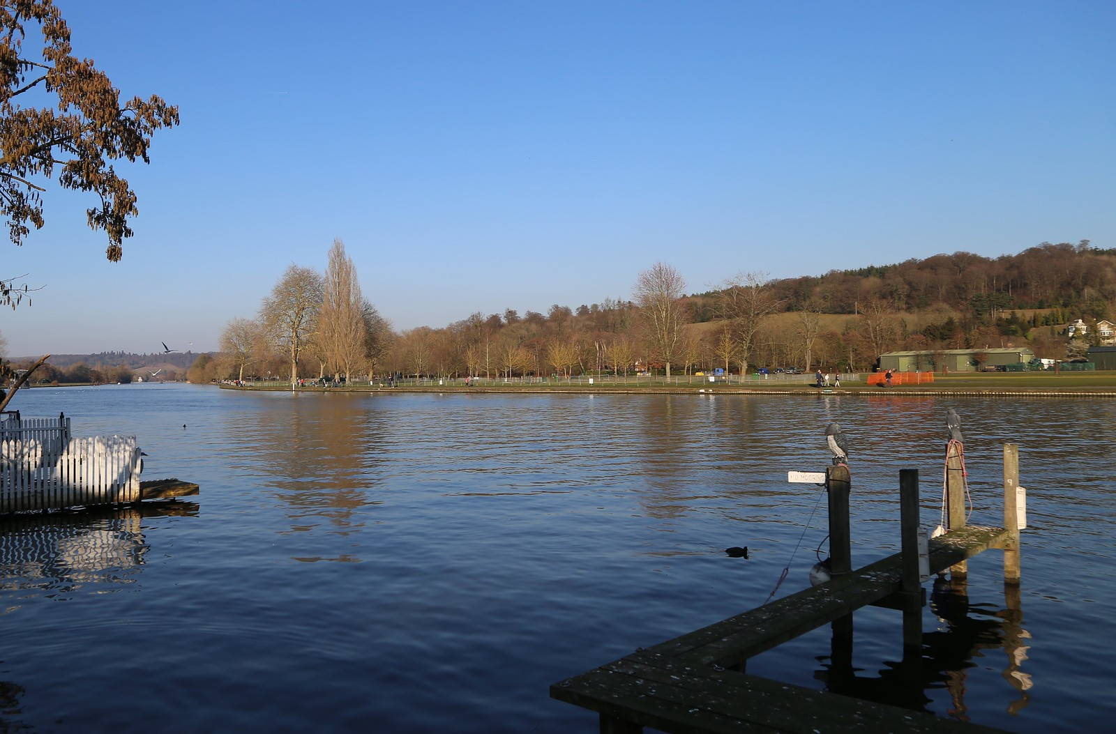 Looking across the Thames - Henley