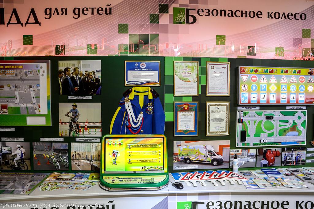 IMG_0100й