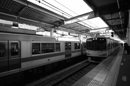 04-04-2019 Nishinomiya, Hyogo pref (55)