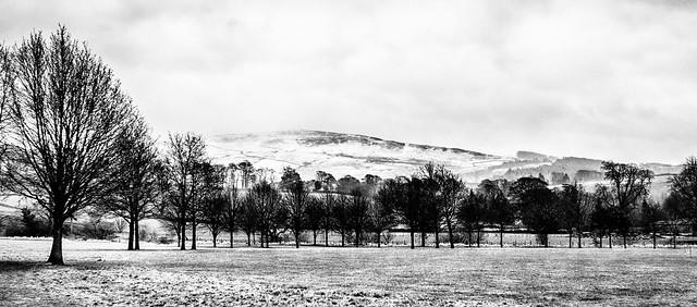 Yorkshire Dales--Snow mono