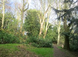 Balbirnie Walk   by piningforthewest