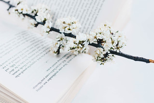 Open book and spring flowers | by wuestenigel