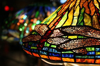 Tiffany Glass collection: Dragonfly | by Can Pac Swire