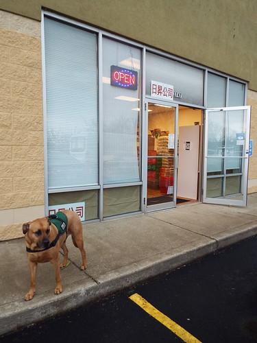 grocery store shopsmall sunriseasiangrocery louisville kentucky