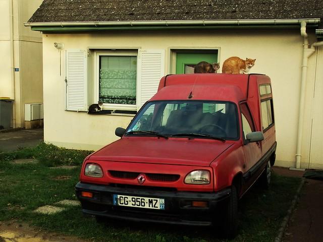 Renault Express Nazelles / Amboise (37 Indre et Loire) 04-11-18a