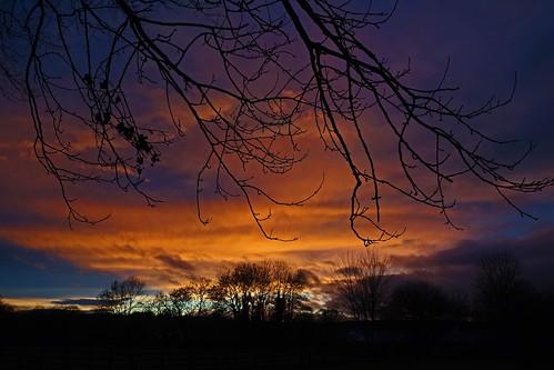 sun rise cullompton leat fields devon ipm