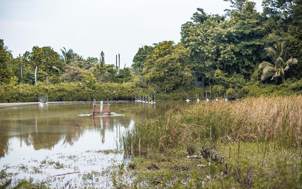 Rang-Yai-Island-Phuket-7214