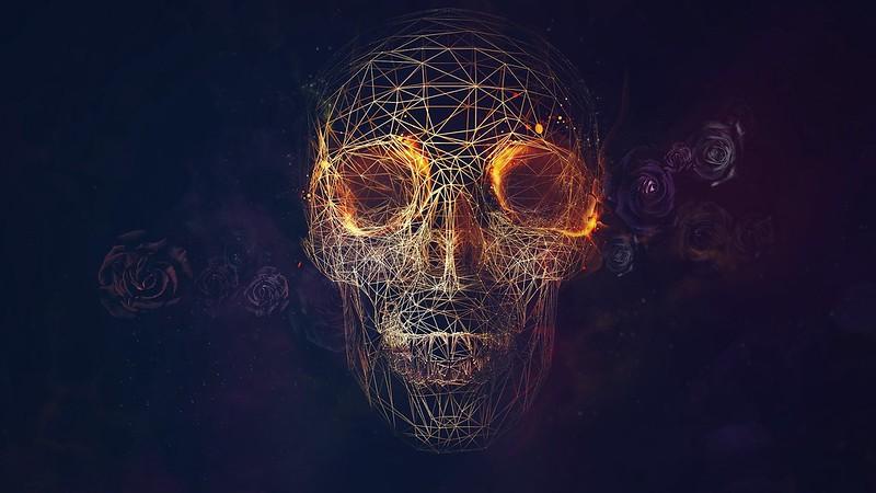 Обои череп, линий, розы, геометрия картинки на рабочий стол, фото скачать бесплатно
