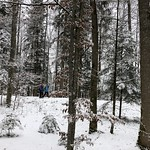 2019-01-09 Zollbrück_Fred (25)