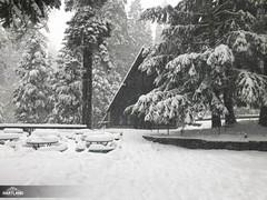JH Winter '19-177