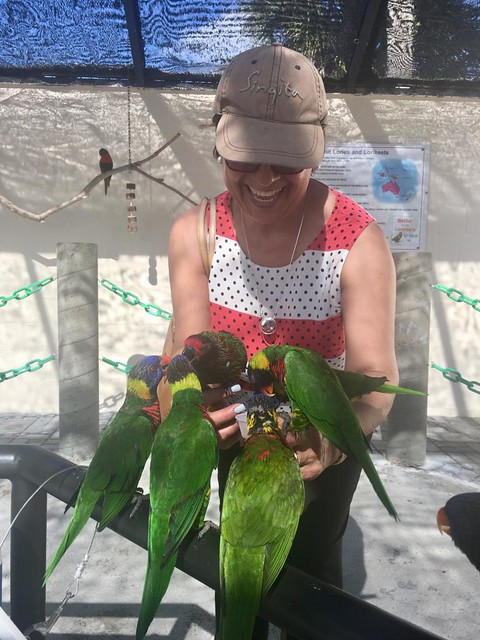 Colombiana, having the time of her life, surrounded by Lorakeets.