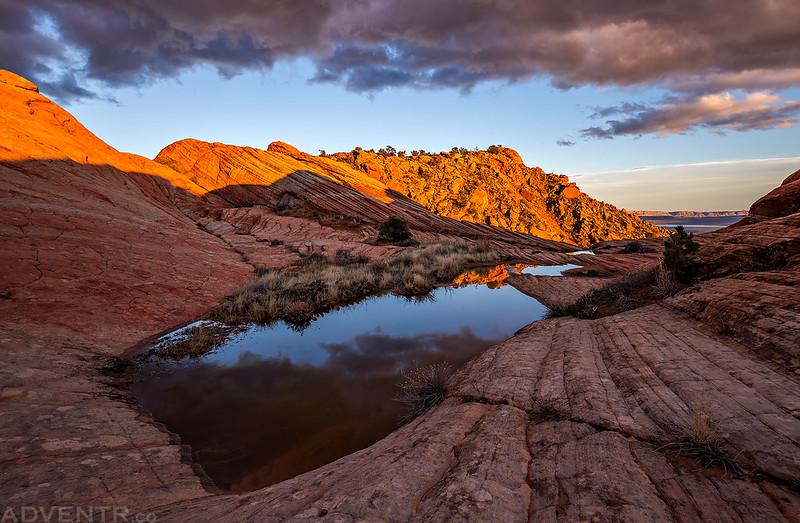Desert Pools