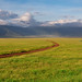 Daybreak in the Ngorongoro Crater by Jill Clardy
