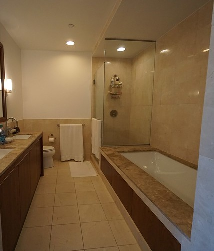 Master%20Bathroom%20-%20Shower%20View%20-%20Before