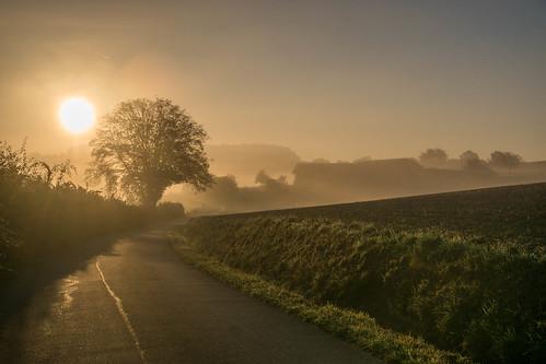 préizerdaul bettborn pratz sunrise sonnenaufgang luxemburg sun sonne landscapes nature trees bäume morgen morning felder fields europe autumn herbst platen reimberg