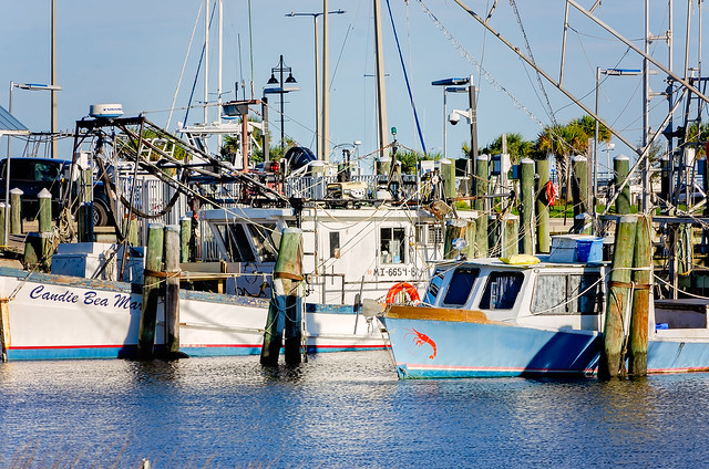 Shrimp boats at Pass Christian Harbor in Pass Christian Mississippi