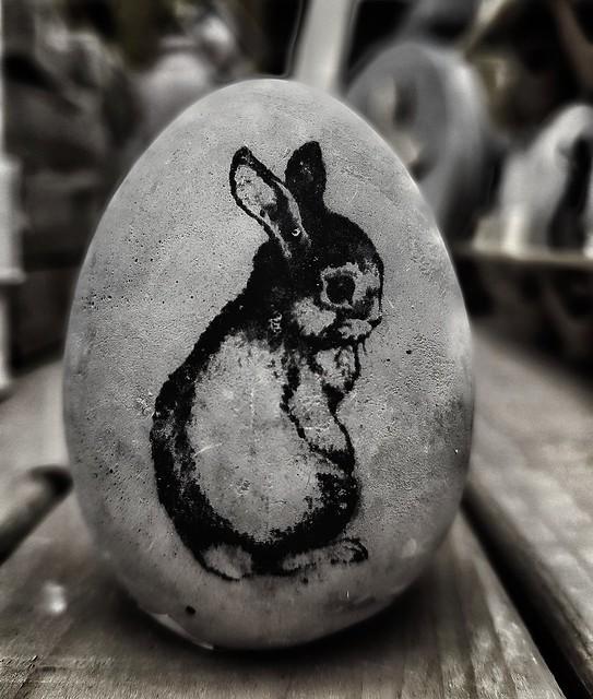 Lief klein konijntje had een vliegje op z'n neus #bunny #rabbit #konijntje #portrait #portraits #portret #blackandwhite #blacknwhite #bnw #bws #bw #noir #bnwphoto #bnwphotography #zwartwit #lovephotography #photography #photographer #fotografie #fotograaf