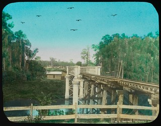 Wooden railway bridge on the North Coast line Landsborough region, Queensland, ca. 1910