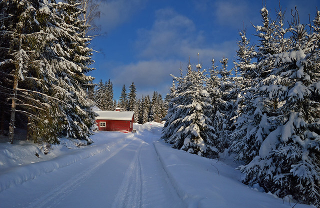 Memories of snowy winter 2019. Finland.