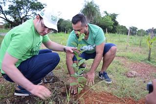 Projeto Verde Novo