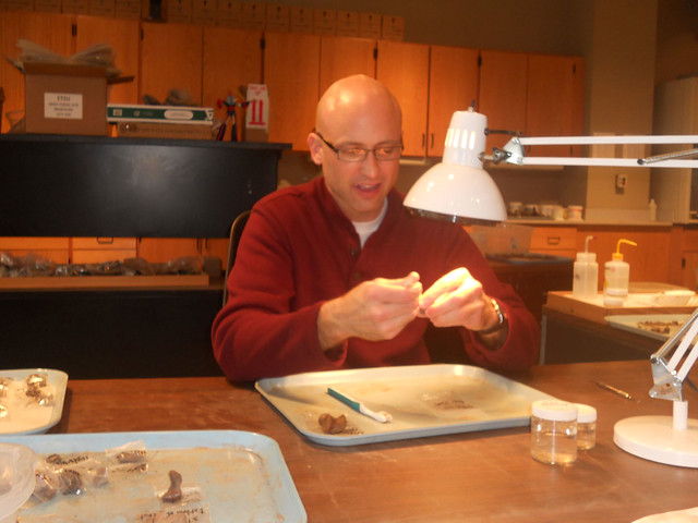 Gray Fossil Site Lab