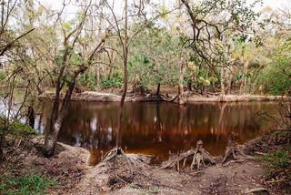 Alafia River (Alderman's Ford)