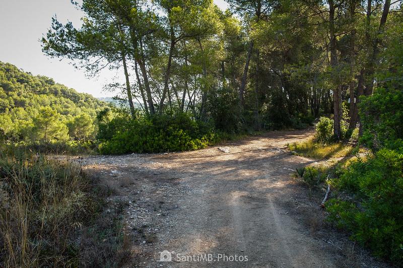 Camino a La Roqueta