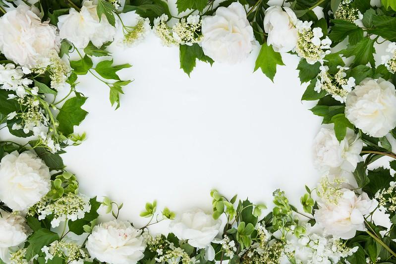 Обои цветы, фон, букет, рамка, Flowers, bundle картинки на рабочий стол, раздел цветы - скачать