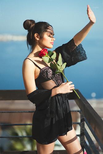 Rosas   by javier_jayma